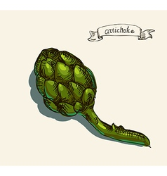 Artichoke sketch vector