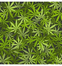 marijuana leaves seamless background vector image