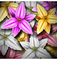 Background with colorful lilies vector image