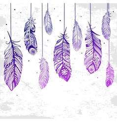 Beautiful of feathers vector image