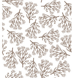 Hand drawn seamless chamomile background vector