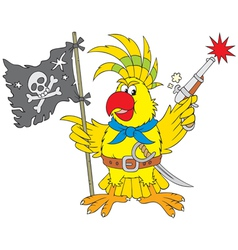 Parrot pirate vector