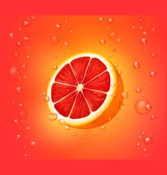 grapefruit juice background vector image vector image