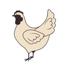chicken animal icon vector image