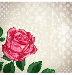 Vintage abstract rose vector
