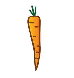 carrot linear thin line icon vector image vector image