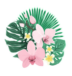Exotic tropical bouquet orchid plumeria leaves vector