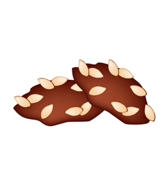 Two homemade almond cookies on white background vector