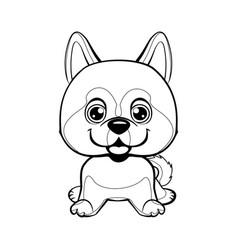 dog alaskan kli kai breed sitting lovely linear vector image vector image