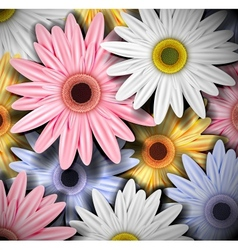 Background with colorful gerberas vector
