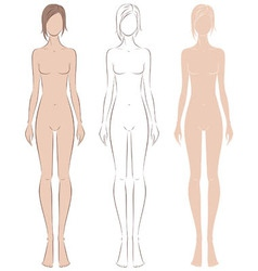 Female figure vector image