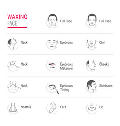 waxing face icons vector image