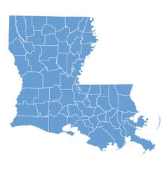 State map of louisiana by counties vector