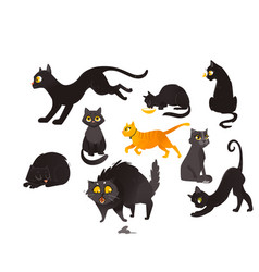 Set of cats eating sitting sleeping and playing vector