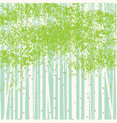 birch grove background against the blue sky vector image vector image