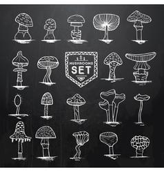 mushroom set hand drawn on black vector image vector image