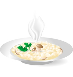 Rice with porcini mushrooms vector