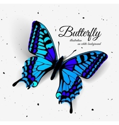 Realistic butterfly with shadow and noise vector