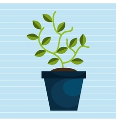 Plant pot design vector