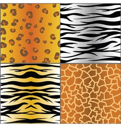 Set of animal skins vector