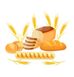 whole wheat bread vector image vector image