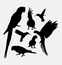 Parrot and hummingbird silhouettes vector