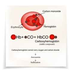 Carboxyhemoglobin joining the hemoglobin carbon vector