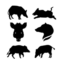 Boar set vector