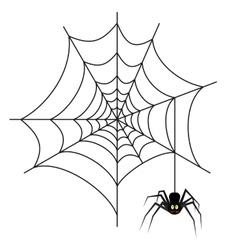 Halloween spider on web vector