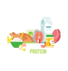 Proteins food vector image vector image