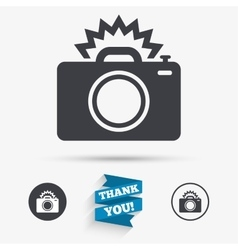 Photo camera sign icon Photo flash symbol vector image