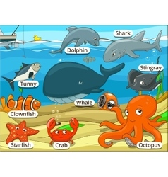 Underwater animals and fish with names cartoon vector