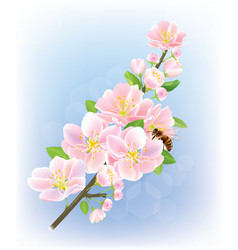 Blooming branch vector image