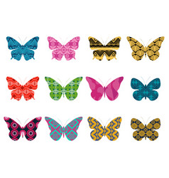 Butterflies with a pattern on a white background vector