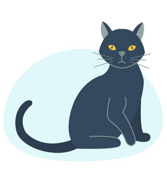 Cute black cat character funny animal domestic vector