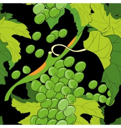 grapevine pattern vector image
