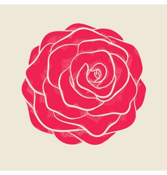 Pink rose in a hand-drawn graphic style vector