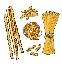 Big collection of italian pasta sketch style vector image