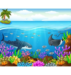 cartoon fish under the sea vector image