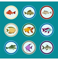 Fish on the plate icons set vector image vector image