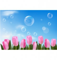 tulips bckground with blue sky vector image