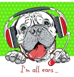 Dog bullmastiff with phone headset vector