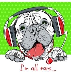 dog Bullmastiff with phone headset vector image vector image