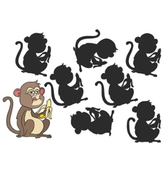 monkey eating a banana vector image