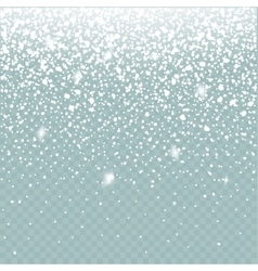 Snow effect isolated Falling Snow winter vector image vector image