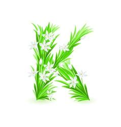 spring flowers alphabet k vector image