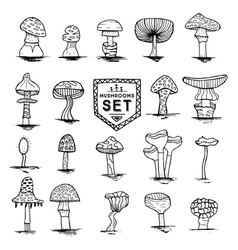 mushroom set hand drawn vector image