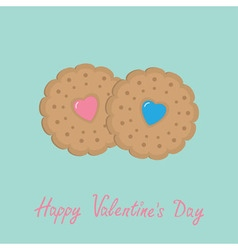 Two biscuit cookie cracker with pink and blue vector