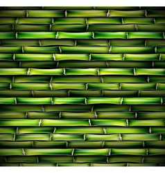 Background of bamboo vector