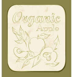 Apple label vector